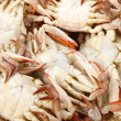 Steamed crabs — Stockfoto #30308077