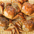 Foto Stock: Steamed crabs