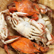 Steamed crabs — Stockfoto #30865839