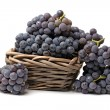 Grapes on white background — Stock Photo