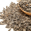 Sunflower seeds close up — Stock Photo