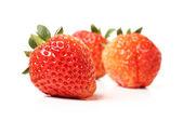 Schöne erdbeeren — Stockfoto