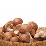 Shiitake mushroom — Stock Photo #32895753