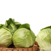 Cabbage isolated on white background — Stock Photo