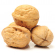 Walnut — Stock Photo #34529437