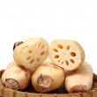 Lotus root — Stock Photo