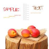 Ripe peach — Stock Photo
