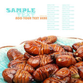 Silk worm cocoon — Stock Photo