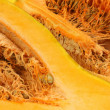 Orange pumpkin background — Stock Photo