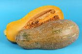 Cutted Orange pumpkin — Stock Photo