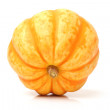 Mini pumpkin — Stock Photo