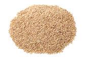 Pearl barley — Stock Photo