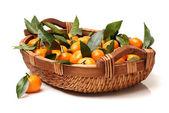 Mandarine orange sur — Photo