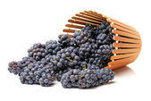 Tasty grapes — Stock Photo