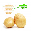 Stock Photo: Two potatoes