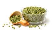 Green soya beans — Stock Photo