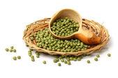 Dish of soya beans — Stock Photo