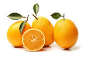 Sweet oranges fruit — Stock Photo