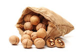 Walnuts in bag — Stock Photo