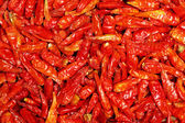 Dried hottest pepper — Stock Photo