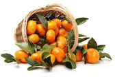 Tangerine oranges in bowl — Stock Photo