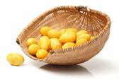 Yellow olives — Stock Photo