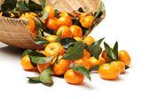 Сочные мандарины — Стоковое фото
