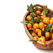 Mandarines dans le panier — Photo