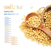 Soybeans with spoon — Stock Photo