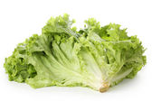 Fresh lettuce — Foto de Stock