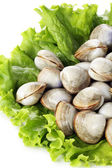 Clams on salad — Stock Photo