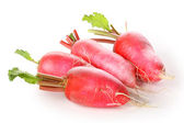 Fresh radishes — Foto de Stock