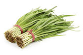 Natural leek — Foto Stock