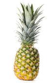 Whole Pineapple — Stock Photo