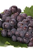 Grapes with leaf — Stock Photo