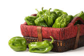 Basket of peppers — Stock Photo