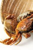 Krabben in de mand — Stockfoto