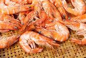 Crevettes cuites tigre — Photo
