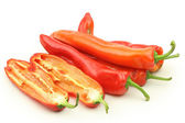 Group of chili peppers — Stock Photo
