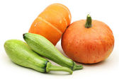 Pumpkins with cabagges — Stockfoto