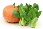 Bok Choy and pumpkin — Stock Photo