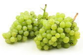 Delcious grapes — Stock Photo
