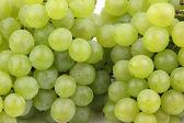 Juicy grapes — Stockfoto