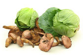 Mushrooms with cabbages — Stock Photo