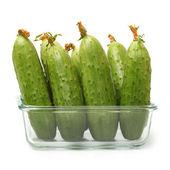 Zielone ogórki — Zdjęcie stockowe