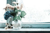 Flowers on the windowsill — Stock fotografie