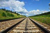 Long railway — Stock Photo