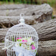 Cage on a tree — Stock Photo