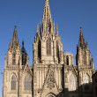 Barcelona Seu Cathedral — Stock Photo #37862985