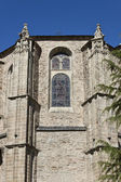 Detail of Collegiate Church of Santa Maria — Stock Photo